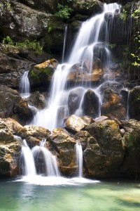 waterfall / soft skills